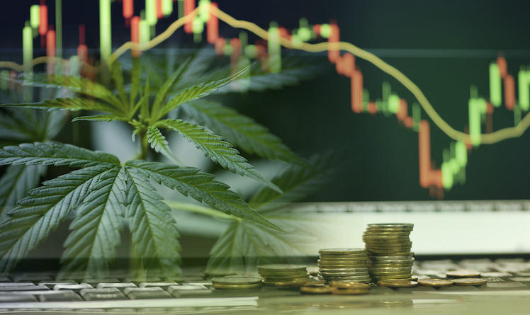 Could the U.S. See Federal Legalization in 2021?